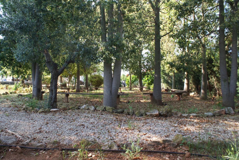 Jardines y entorno del Centro de tratamiento y desintoxicacion Llaurant La Llum